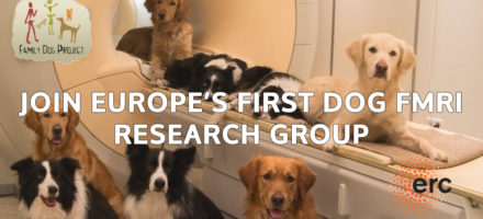 Postdoc position available at the Senior Family Dog project