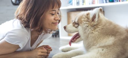 New FDP study about motherese and dog directed speech