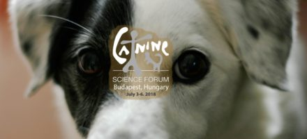Canine Science Forum 2018 – the registration is open