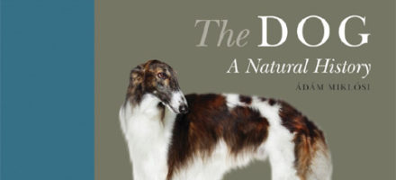 """Book published: """"The Dog: A Natural History,"""" edited by Prof. Ádám Miklósi!"""