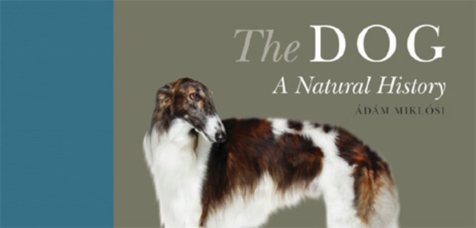 """The Dog: A Natural History,"" edited by Prof. Ádám Miklósi!"